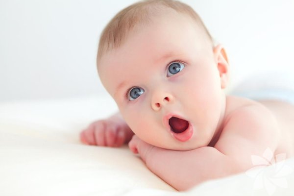 Bebekler, 4 aylık olana dek tuzun tadını alamazlar. Bu gecikmenin sebebi, sodyumu bu dönemde işlemeye başlayan böbreklerin gelişimidir.