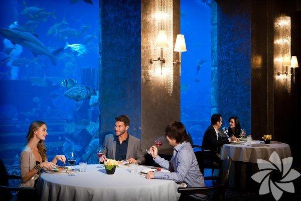Atlantis Otel Dubai'nin Palmiye Adaları'nda yer alan Atlantis Otel, 24 Eylül 2008 yılında hizmet vermeye başladı. Otelin hepsi su altında bulunmuyor fakat süit odalarından bazıları su altına inşa edilmiş. Böylece odanın camından dışarı baktığınızda çeşitli deniz canlılarını görebilirsiniz.
