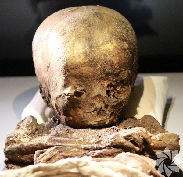 Türkiye'nin ilk ve tek mumya bölümüne sahip müzesi Aksaray müzesinde Mısır'da başlayan mumyalama tekniğinin Anadolu'daki örnekleri Aksaray Müzesi'nde sergileniyor.