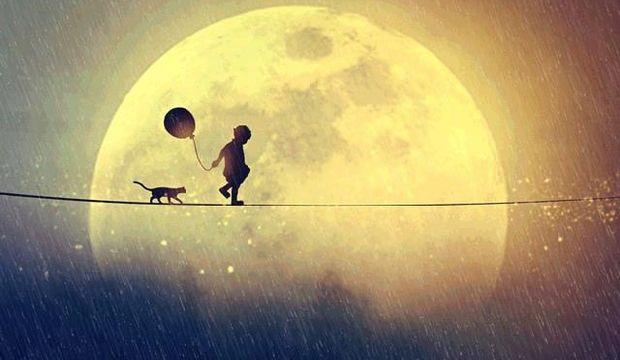 Ay Kova'da - İstekler ve arzular ön planda!