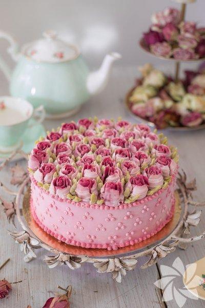 Culinary Dots pastaları