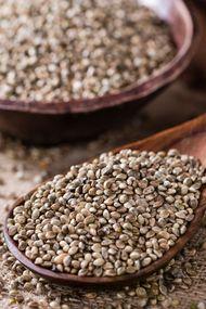 Protein deposu kenevir tohumu