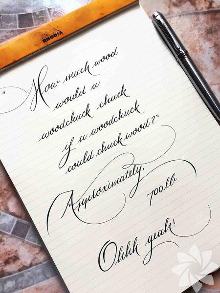 Dünyanın en güzel el yazıları