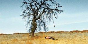 Ahlat Ağacı: Bir memleket filmi