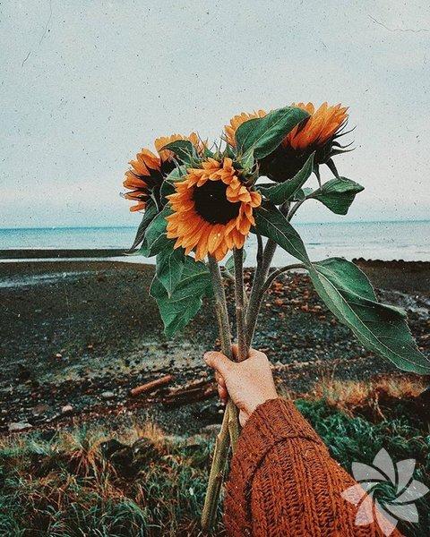 Çiçeklerle sanat