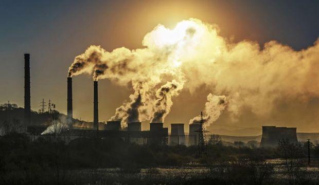 Hava kirliliğinin zeka üzerinde olumsuz etkileri var!
