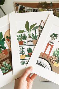 Minik bitkileri duvarınıza taşımak ister misiniz?