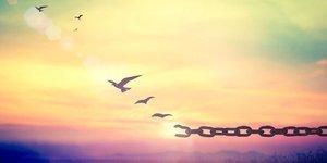 Affetmeyi başarabilmek