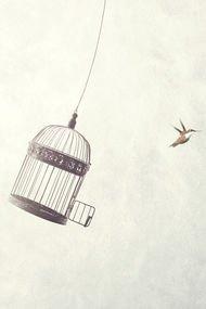 Affetmek özgürleştirir