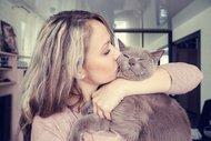 Kediniz sizi seviyor mu?