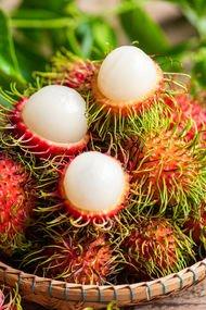 Saçlı meyve rambutan