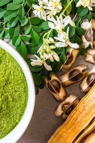 Yeni süper gıda: Moringa