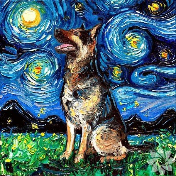 """""""Yıldızlı Gece""""nin sevimli köpekleri"""