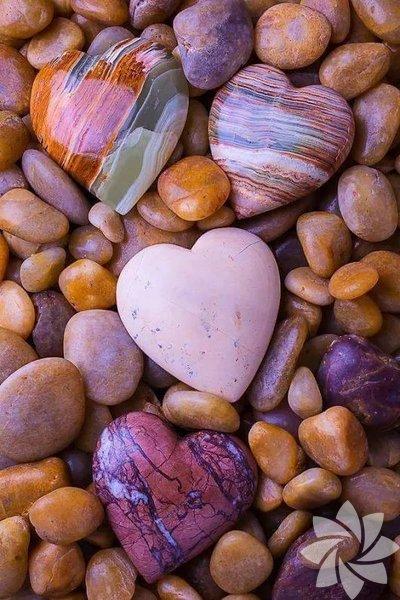 """""""Eğer birbirimizi sevmek durumundaysak, işe birbirimizden nefret ederek başlamamalıyız."""" Nietzsche"""