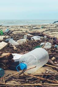 Plastik, nesilleri bozuyor!
