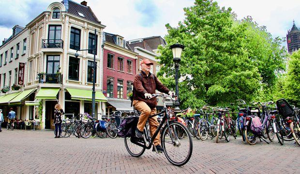 Hollanda'da yeşil çatılar