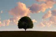 Bazı insanlar neden aşık olamaz?