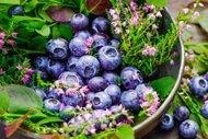 Beslenmenin en'leri: Flavonoidler