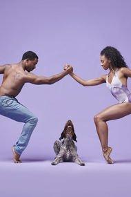 Bale dansçıları vs. köpekler
