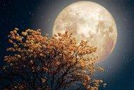 Ünlü astrologlardan Boğa Dolunay'ı yorumu
