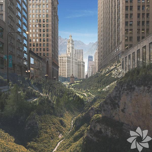 Doğanın distopyası