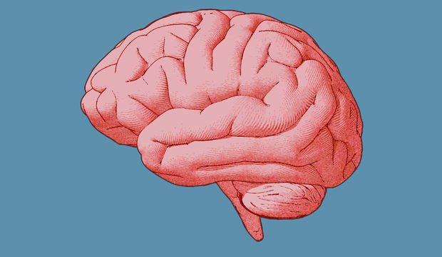 Sürekli ağrı beynin yapısını değiştiriyor
