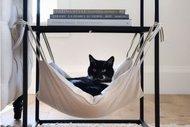 Kedinize eşyalarını kendiniz yapabilirsiniz