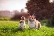 Arkadaşınızla seyahat planlıyorsanız tavsiyelerimiz var