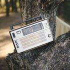 Orman radyosu…