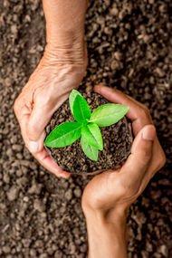Toprak ve tarım
