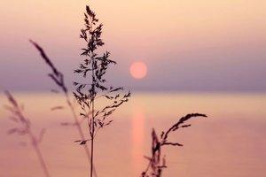 Sessizliğin 5 önemli faydası