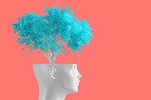 Zihin Haritası öğrenmeyi nasıl kolaylaştırıyor?